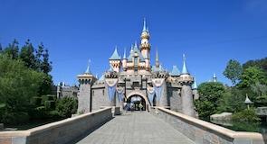 迪士尼樂園®