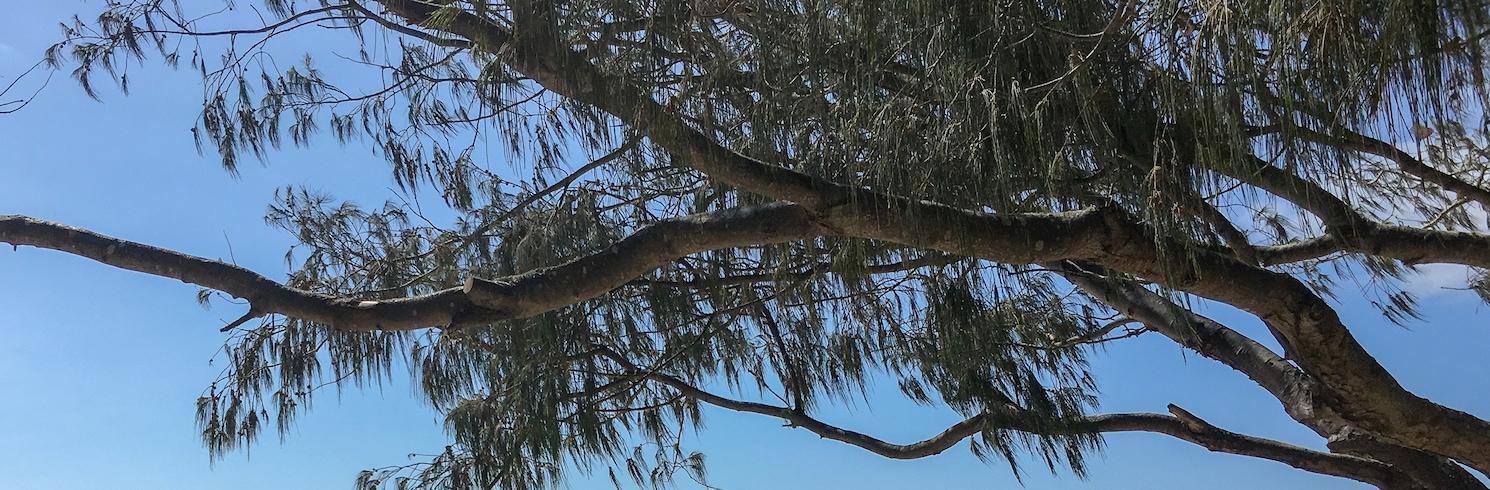 Forster, Novi Južni Wales, Australija