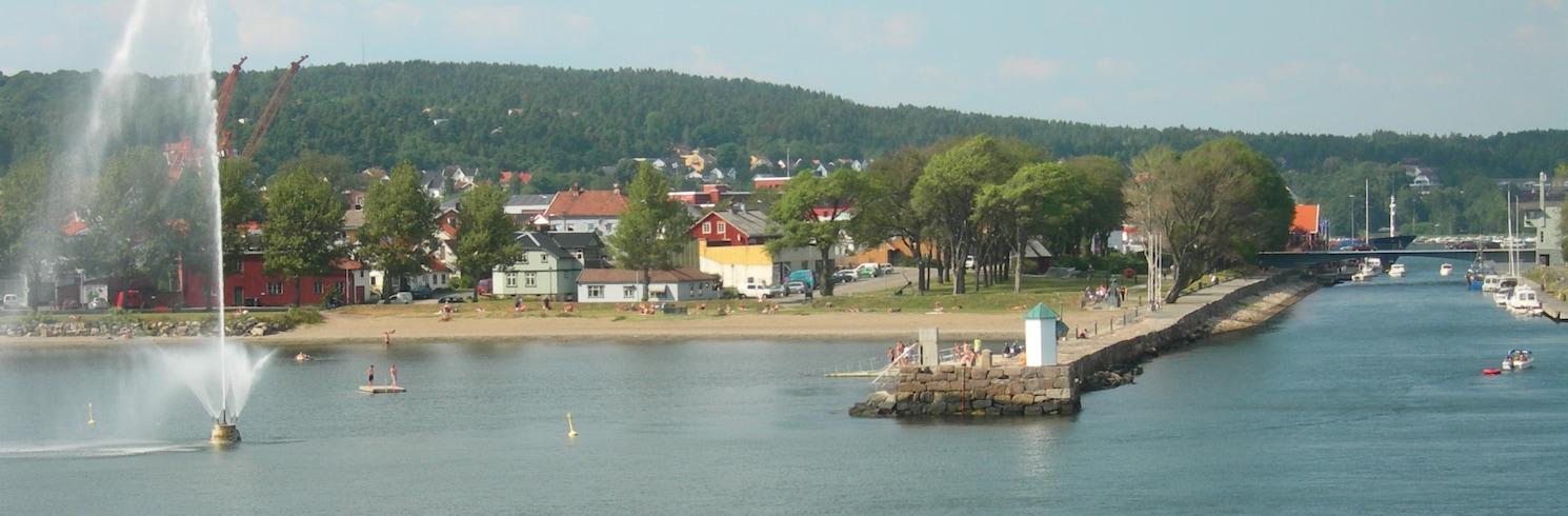 Moss, Norveç