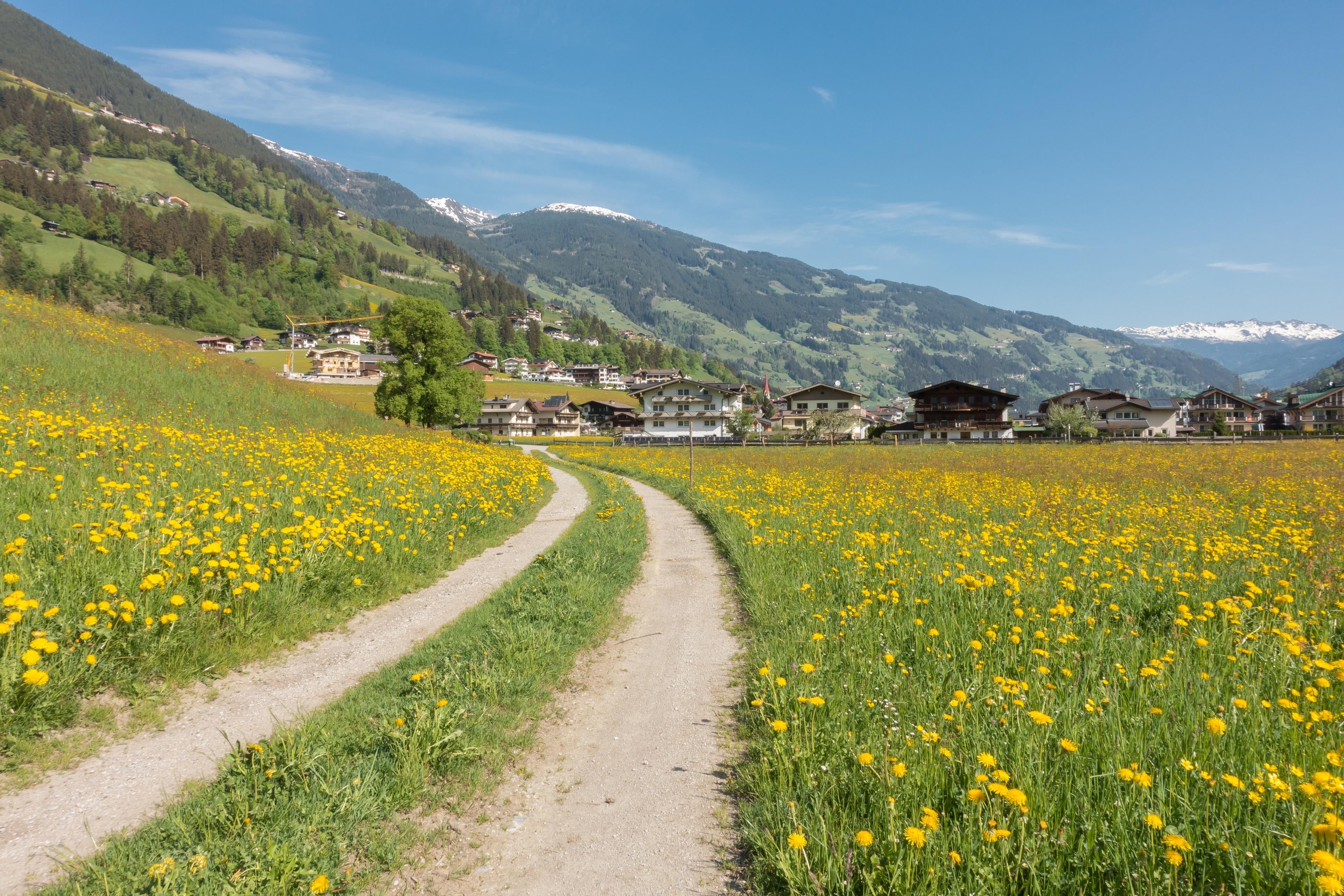 Hippach, Tirol, Österreich