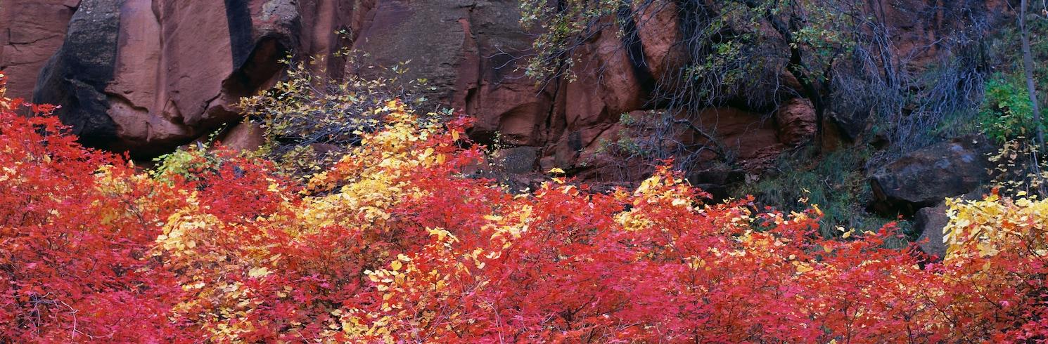 Springdale, Utah, United States of America