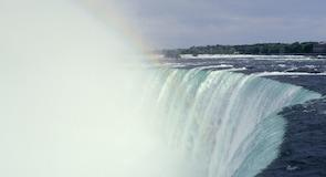 Horseshoe Falls (foss)