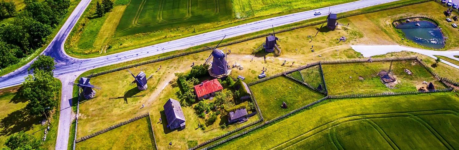 Leisi, Estland