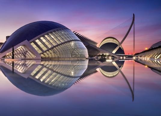 10 Beste Hotels Bij Ciudad De Las Artes Y Las Ciencias Voor Je Vakantie Hotels Com