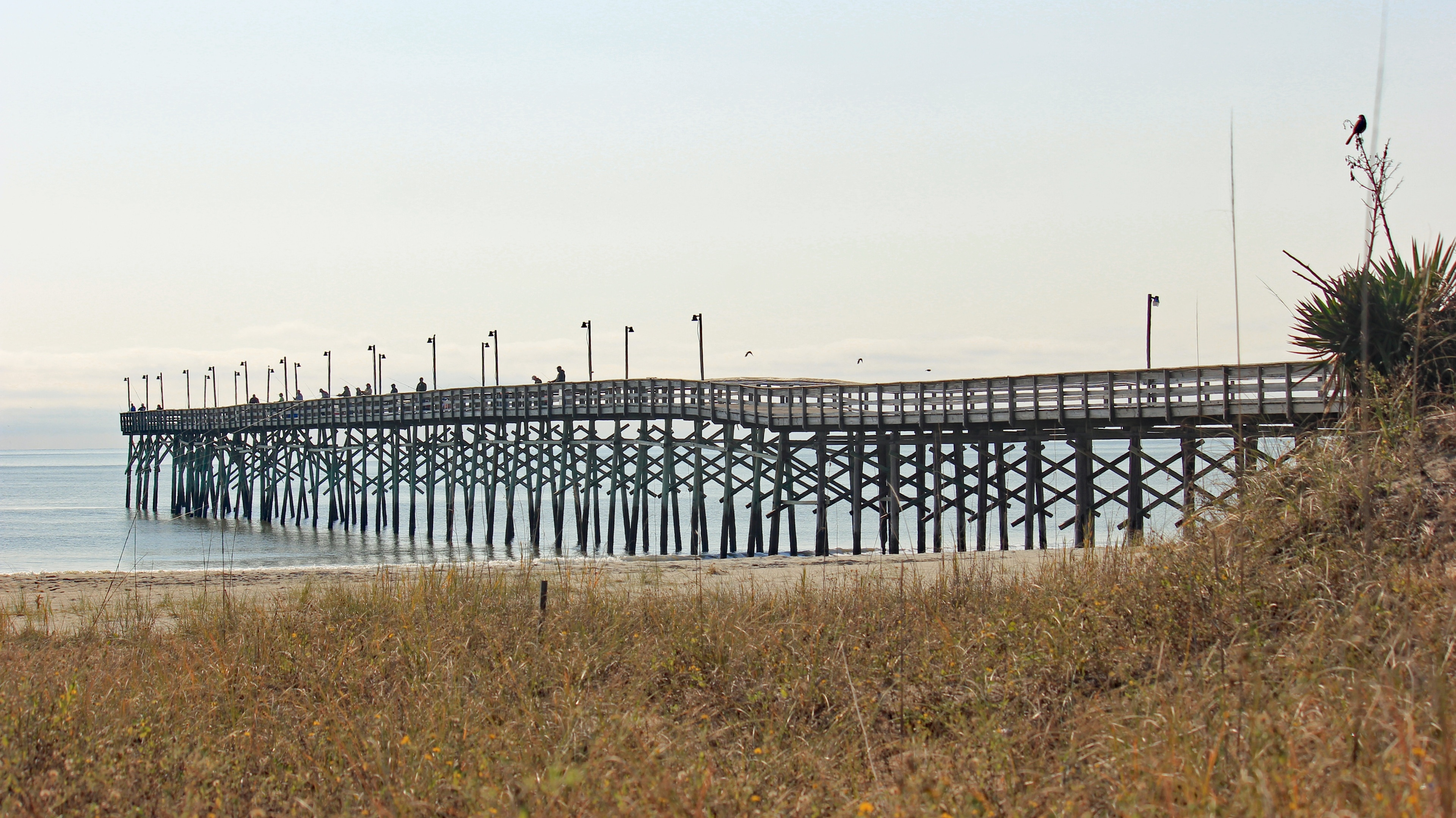 Carolina Beach, North Carolina, United States of America