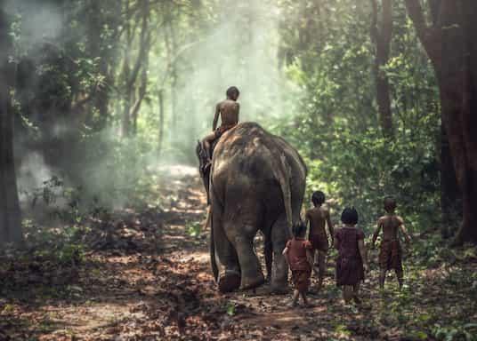 كامبوديا