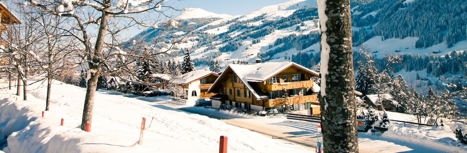 阿德爾博登, 瑞士