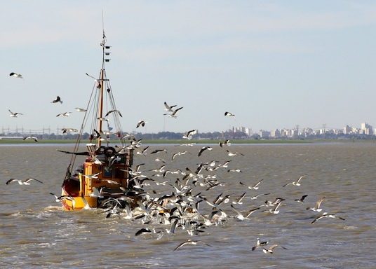 Bahia Blanca, Argentina