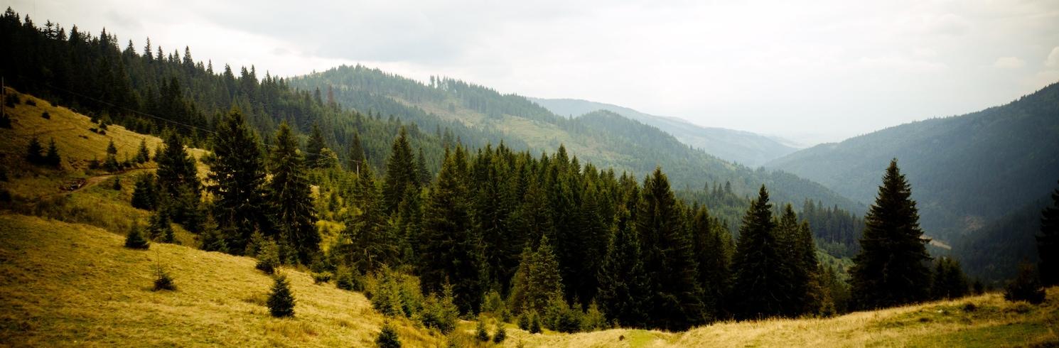 Сату-Марський повіт, Румунія