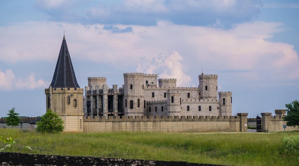 Martin Castle