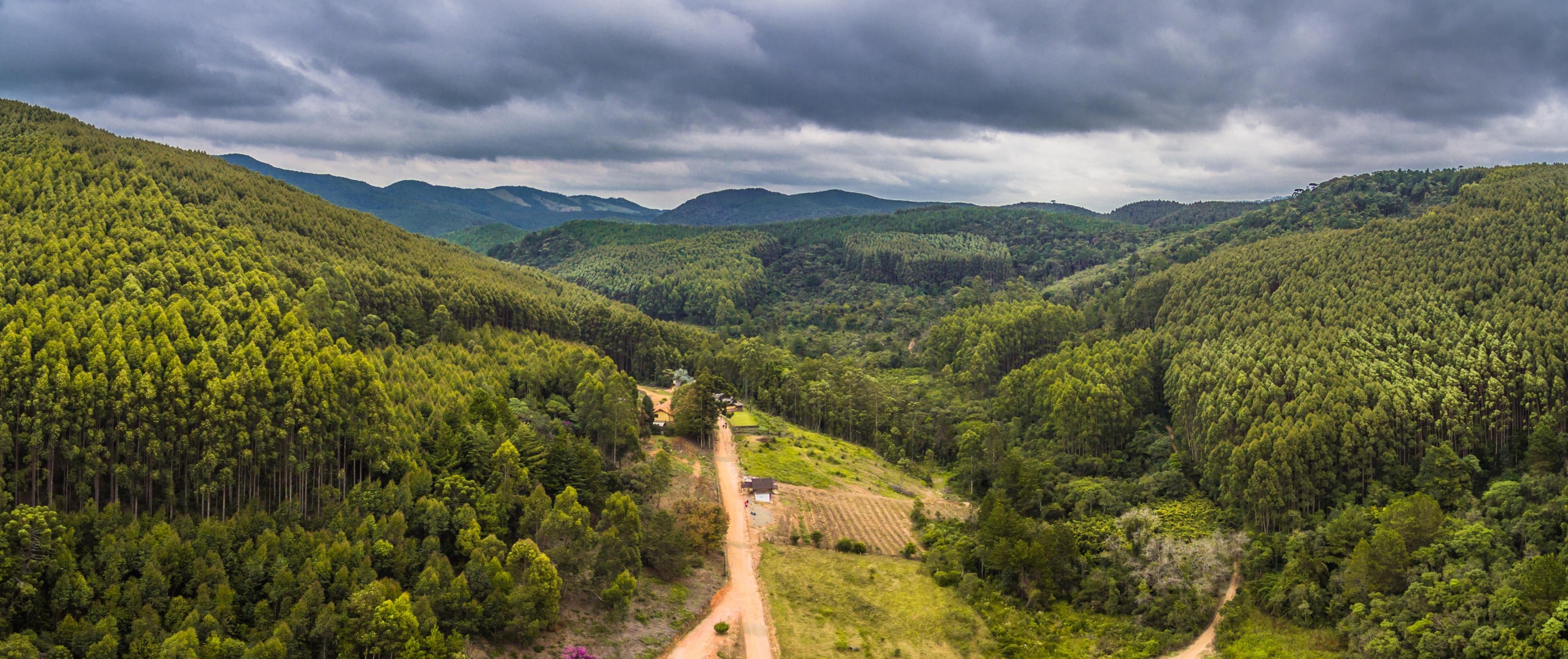Monte Verde, Camanducaia, Minas Gerais (estado), Brasil