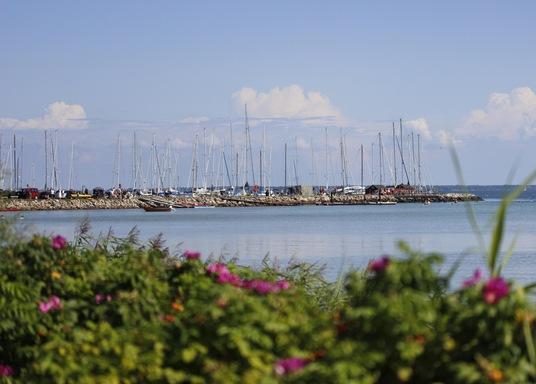 Ρόρβιγκ, Δανία