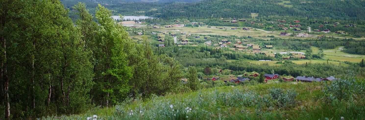 東斯利德勒, 挪威