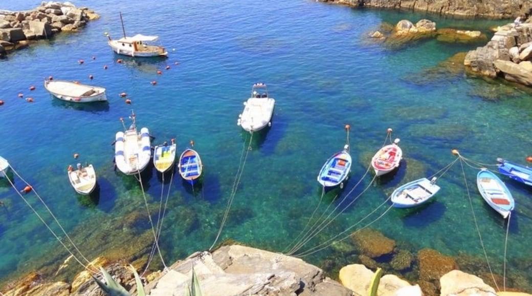 Cinque Terre marinskyddsområde