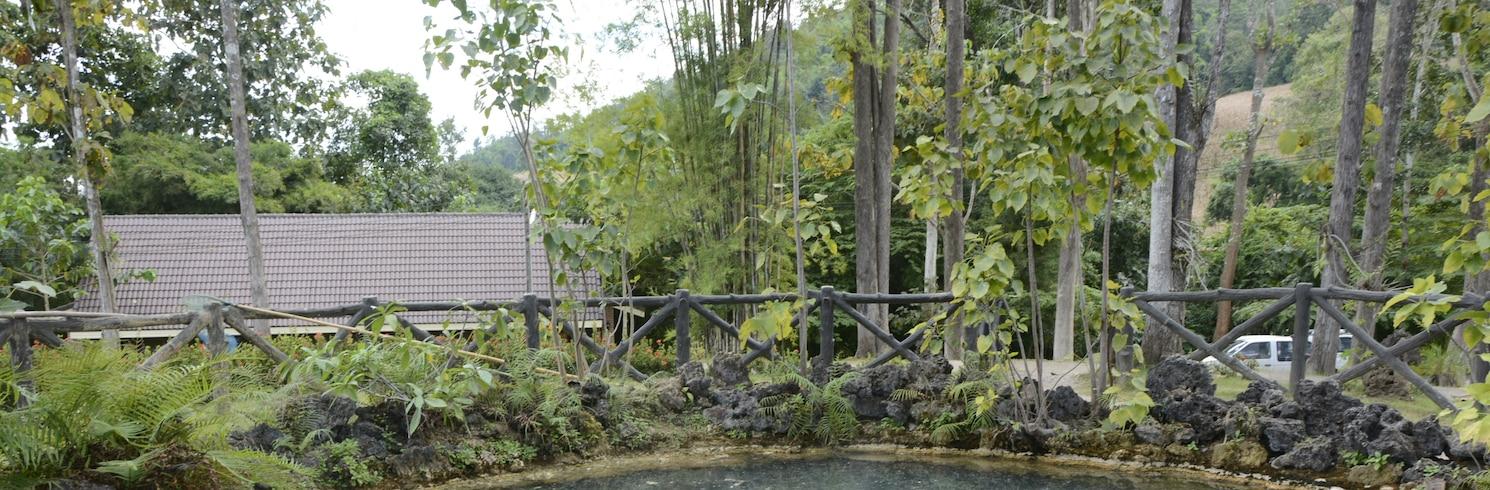 Hakone Kaplıcaları, Japonya