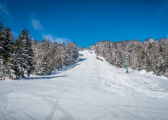 Snowshoe, West Virginia, Verenigde Staten