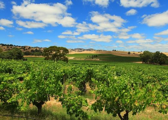 Lyndoch, Jižní Austrálie, Austrálie