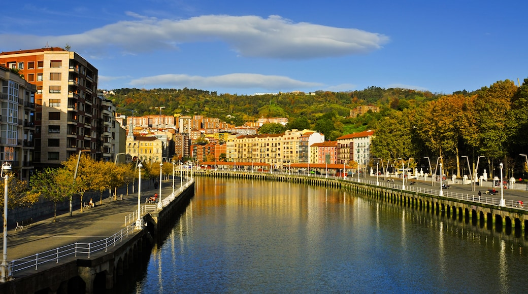 Estuario de Bilbao