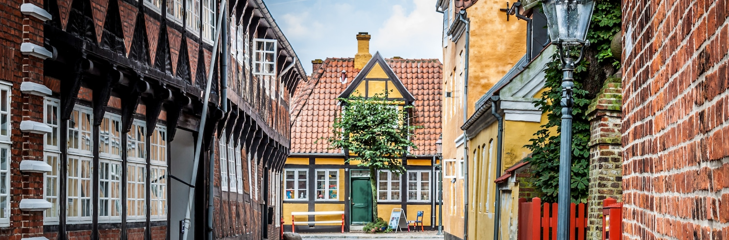Ribe, Taani