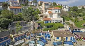פרדו-פרייה
