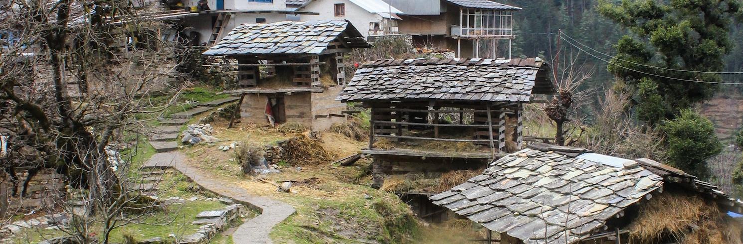 Jibhi, Indie