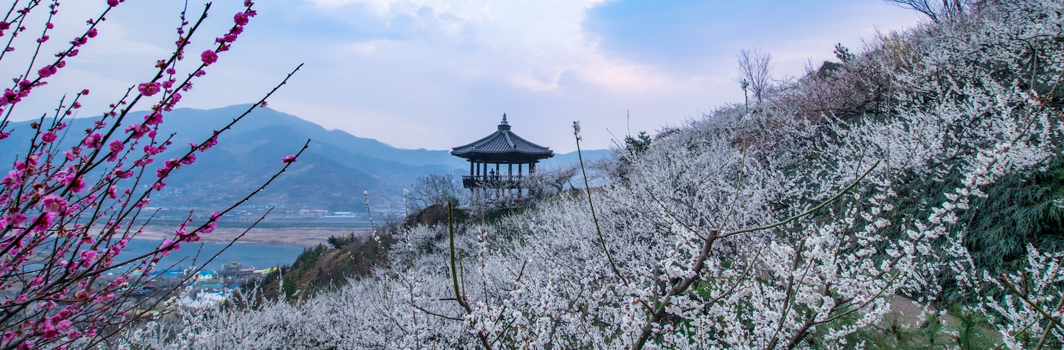 Yeongam, Dél-Korea