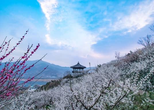 Mokp'o, Corée du Sud