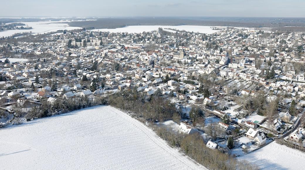 Saint-Arnoult