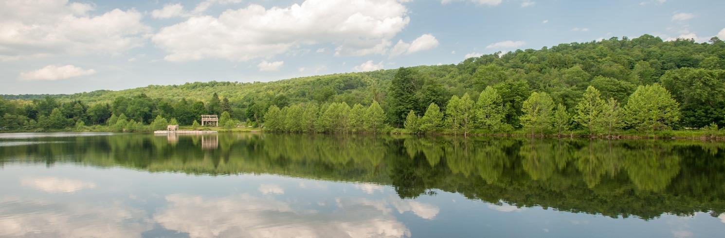 Honesdale, Pennsylvania, Verenigde Staten