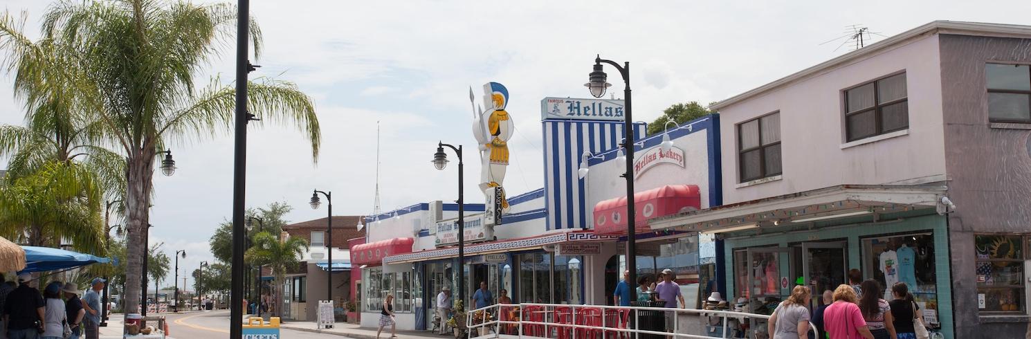 Tarpon Springs, Florida, Amerikas Savienotās Valstis