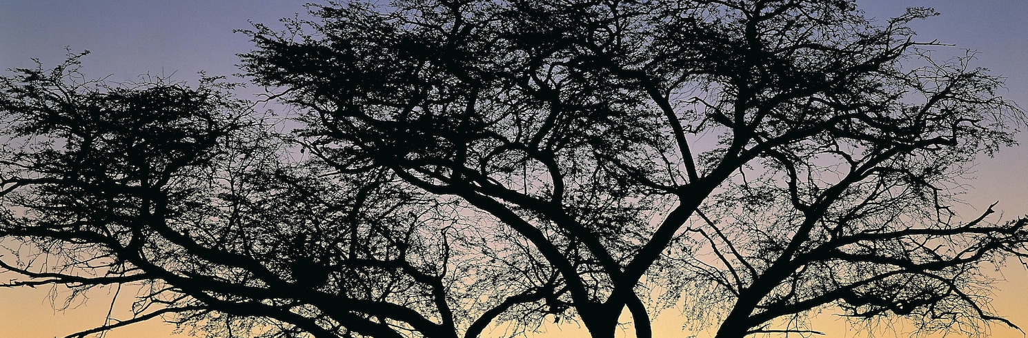 Национальный парк Хванге, Зимбабве