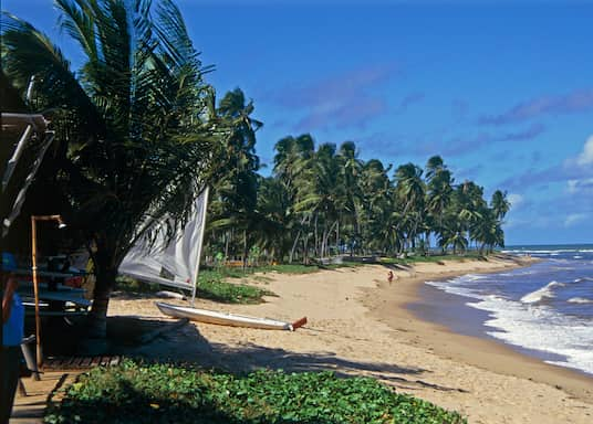 Praia do Forte, Brésil