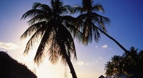 מפרץ מריגו