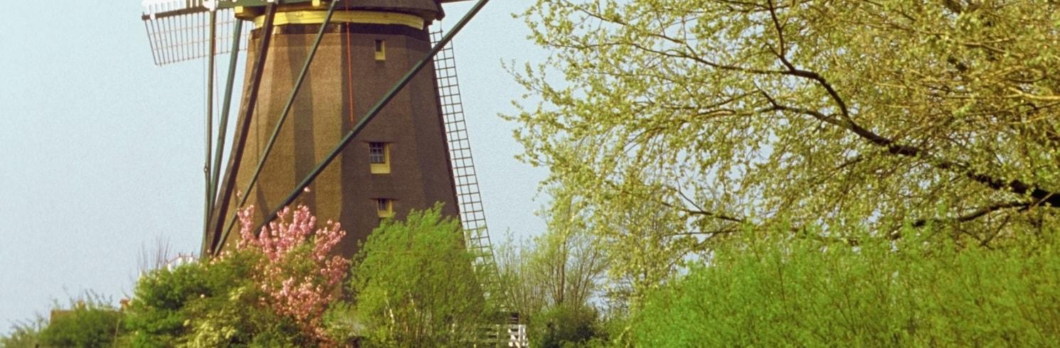 에담, 네덜란드