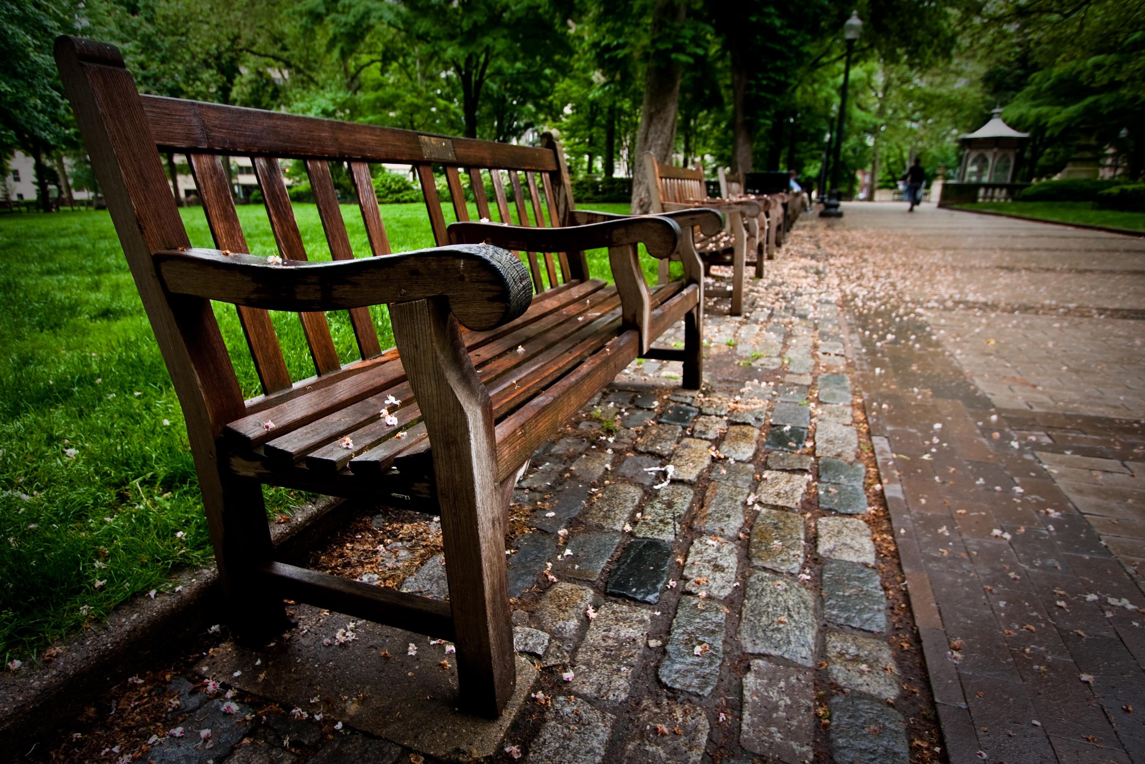 Entre em sintonia com a natureza em Rittenhouse Square, uma área verde agradável em Filadélfia. Conheça  a atmosfera acadêmica nesta área vibrante ou assista a um evento esportivo no local.