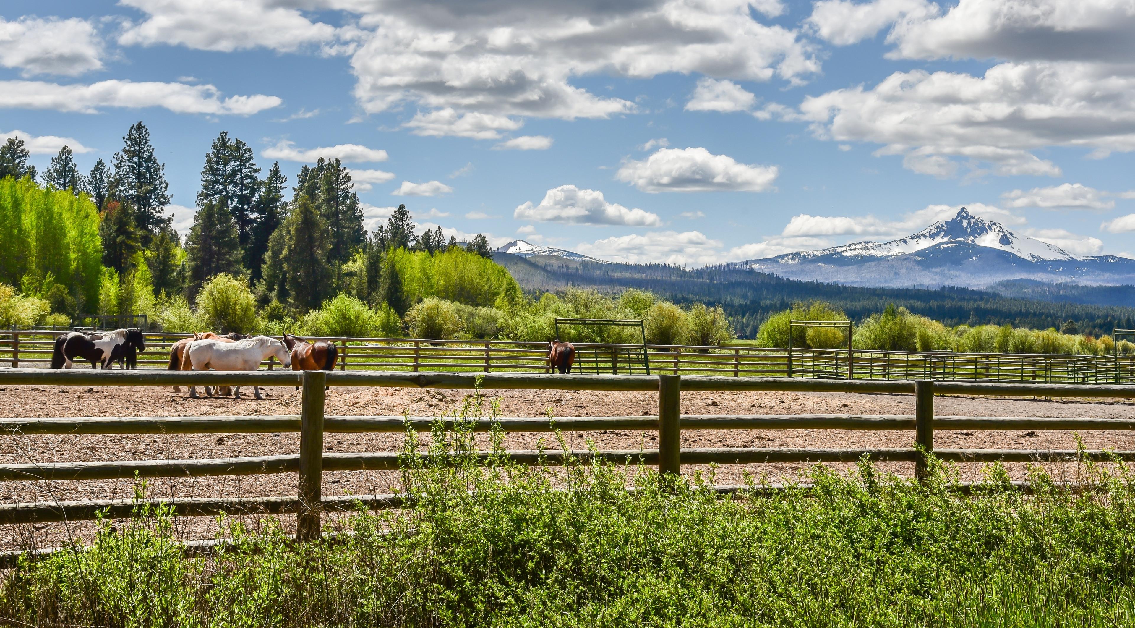 Sisters, Oregon, United States of America