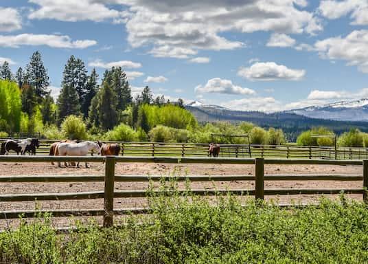 Sisters, Oregon, États-Unis d'Amérique