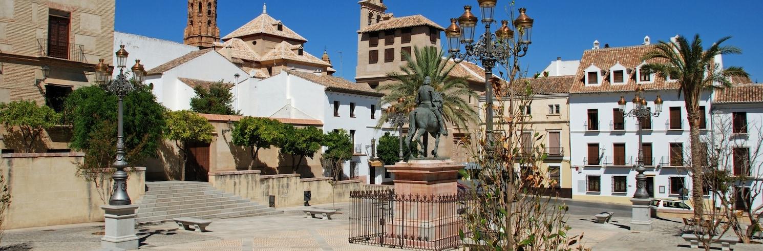 Torrox, Spania