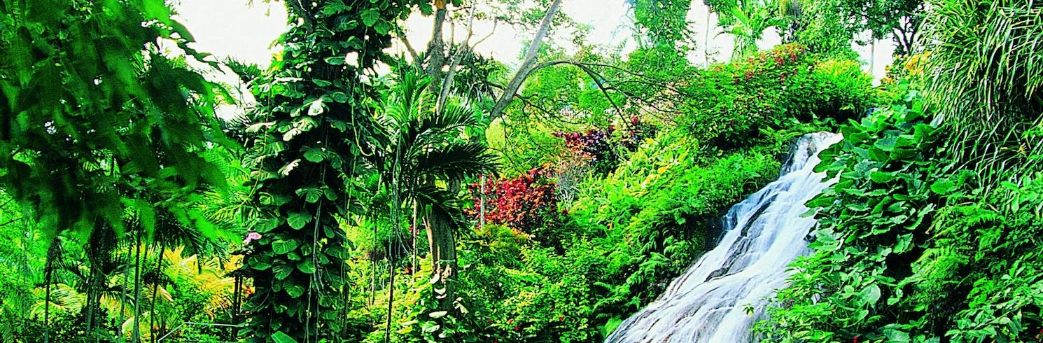 Robins Bay, Jamaika