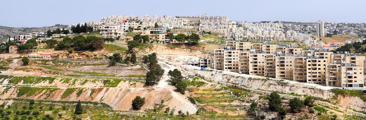 Celile, İsrail