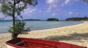 North Palmetto Point