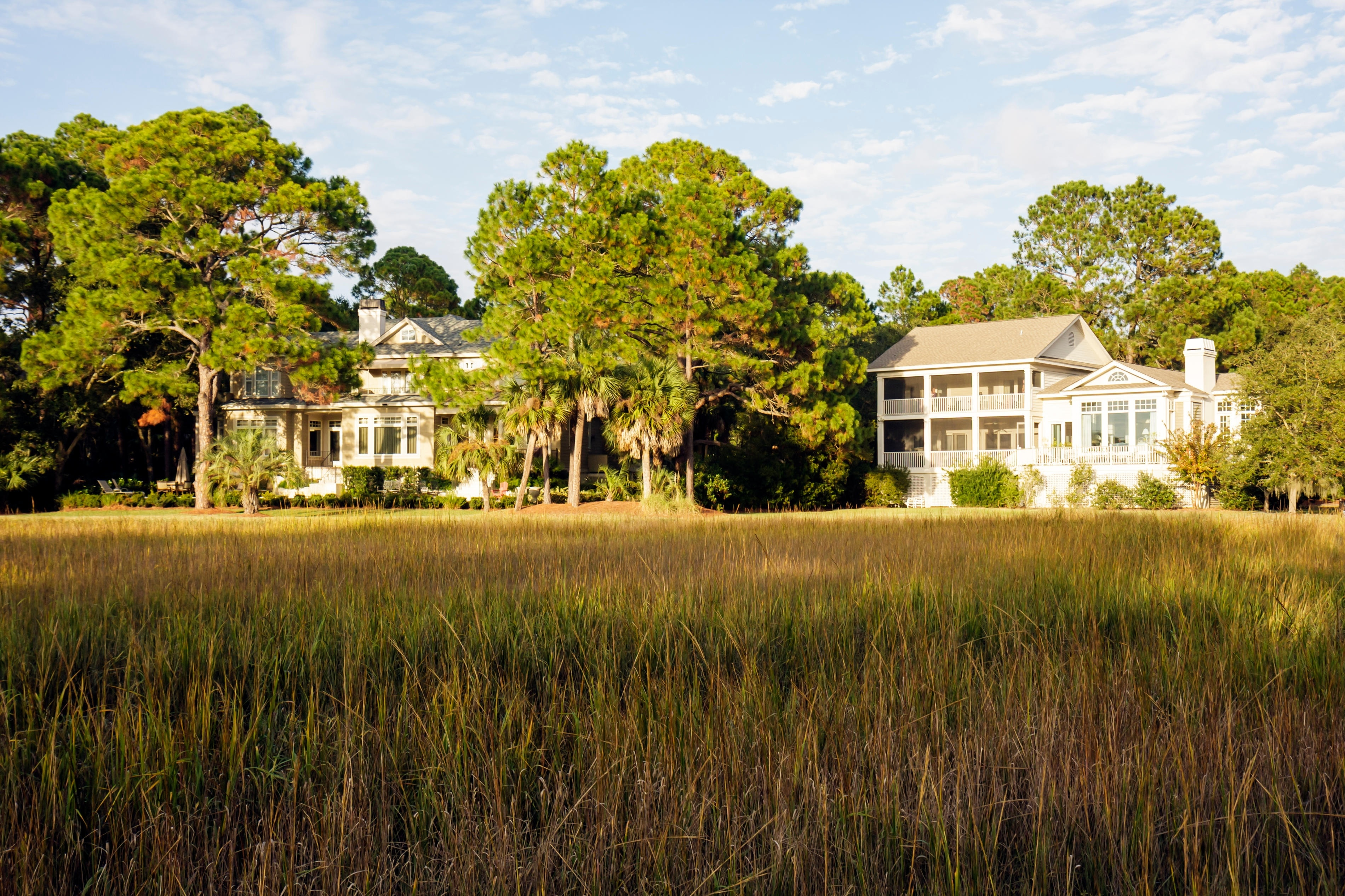 Sea Pines Forest Preserve, Hilton Head Island, South Carolina, United States of America