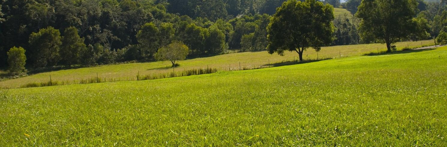 Bellingen Shire Council, New South Wales, Australië