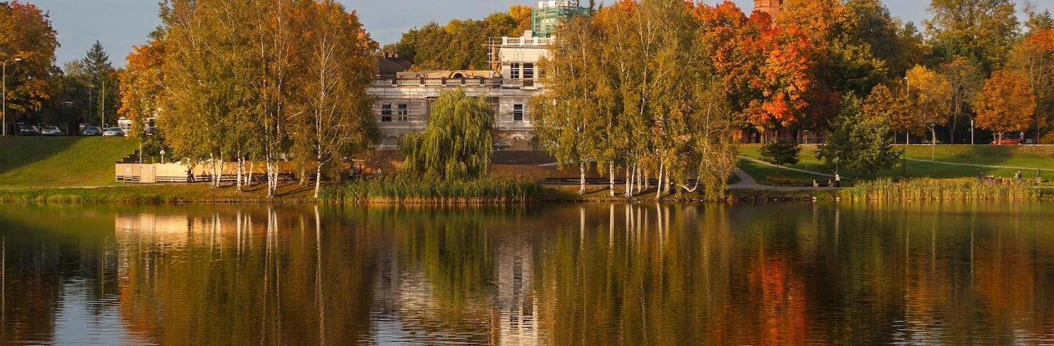 Друскиникай, Литва