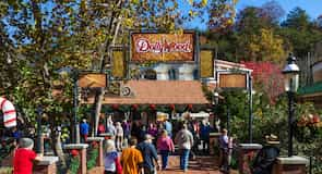 Dollywood (tematiskais parks)