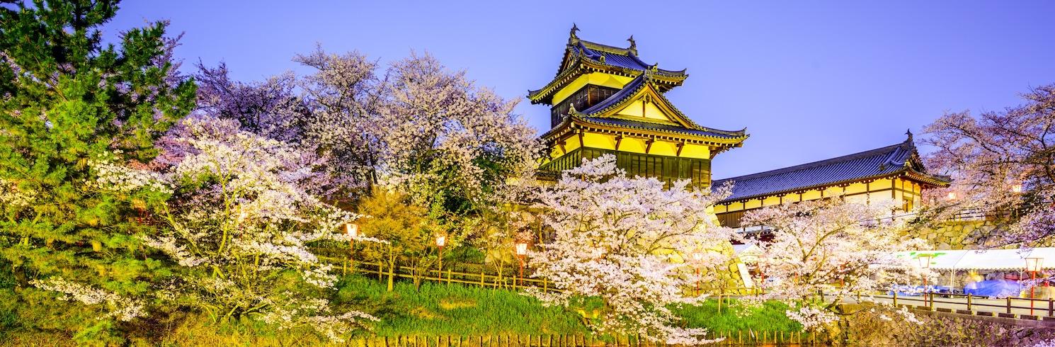 נארה, יפן