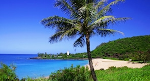 Teluk Waimea