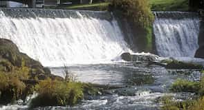 Brewery Park at Tumwater Falls