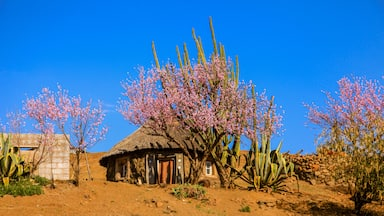 Find Book The Best Hotels In Lesotho For 2021 Expedia
