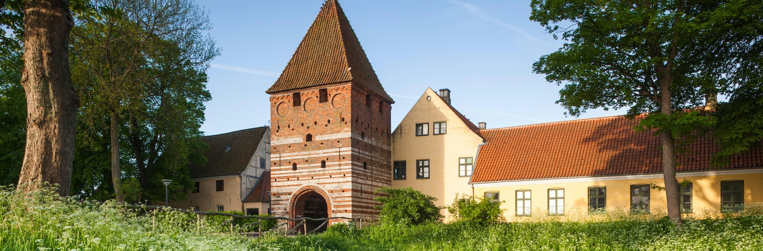 Stege, Dánsko